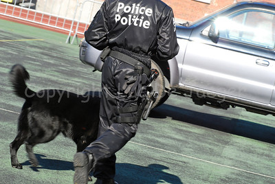 A police dog and his handler of the dog support unit of the federal police at work.