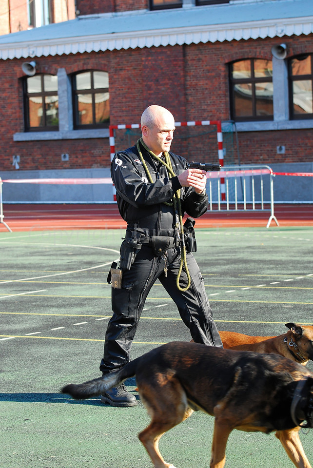 The intervention of a police dog and the handler, member of the dog support unit of the federal police .