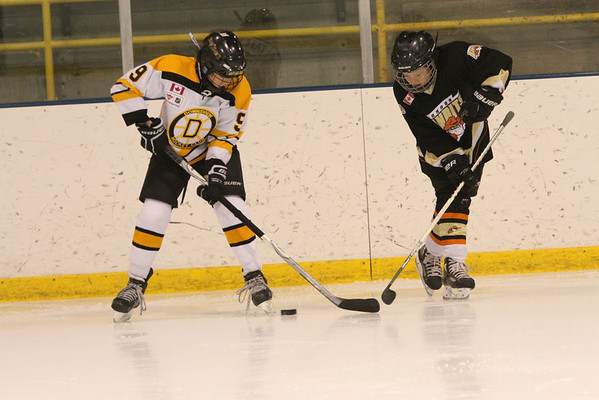 Downsview Beavers - Squirt A2 Silver - 2-7-14