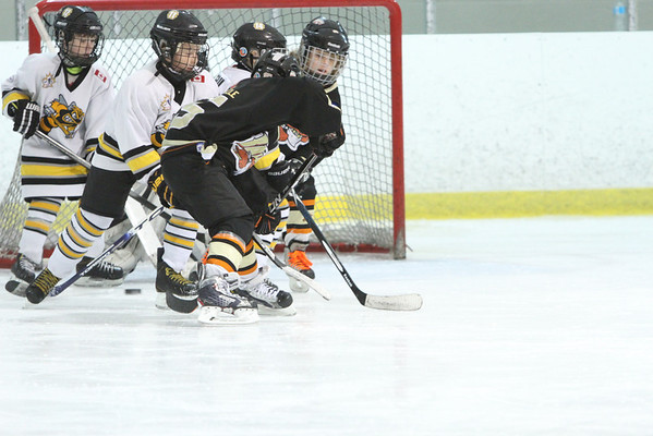 London Bandits Minor Atom MD_Squirt - 2-6-14