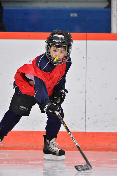 Mini Mite - Bulldogs _ 2-14-14