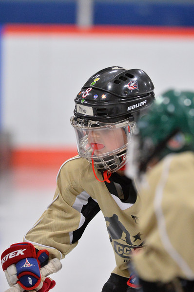 Mini Mite - Irish _ 2-14-14