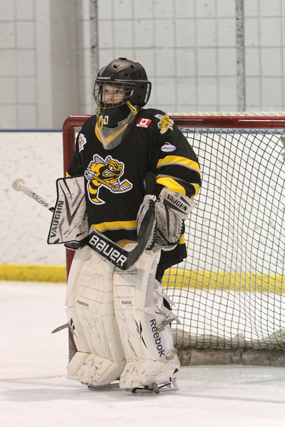Sarnia Jr Sting Minor Novice - Squirt 2-6-14