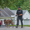 A State Police K9 and Trooper along with Westminster PD emerge from the woods behind Scenic Ave in Westminster after a suspect fled from a terminated pursuit and crash on Rt 2. The suspect Brian Lafrennie was later apprehended on felony warrants on nearby Saunders St. Gardner. SENTINEL & ENTERPRISE/ JIm Marabello