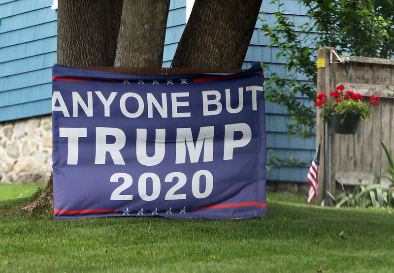 """Anyone but Trump 2020"" sign in yard on Learned Street in Nashua. (SUN/Julia Malakie)"