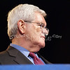 a(147) Newt Gingrich