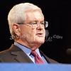 a(142) Newt Gingrich