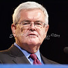 a(139) Newt Gingrich