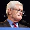 a(149) Newt Gingrich