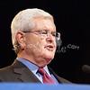 a(141) Newt Gingrich