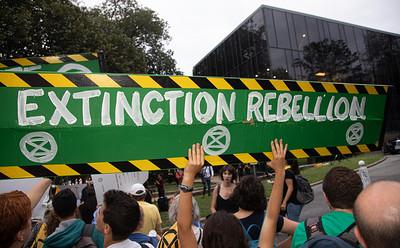Amazon Rainforest Protest; Embassy of Brazil in Washington D.C.