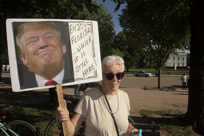 Donald Trump, protest, Paris Climate Accord