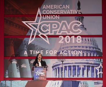 Dana Loesch, NRA, CPAC