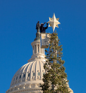 Buddy Paddy of the Capitol Grounds Tree Division attaches the star to the top of the 47th Capitol Christmas tree on December 2, 2011. The 63 foot Sierra white fir from California's Stanislaus National Forest arrived in Washington D.C. a few days earlier, following a 20-day tour across the country. The tree will  be decorated with more than 10,000 LED lights and some 2,000 handmade ornaments. (Photo by Jeff Malet)