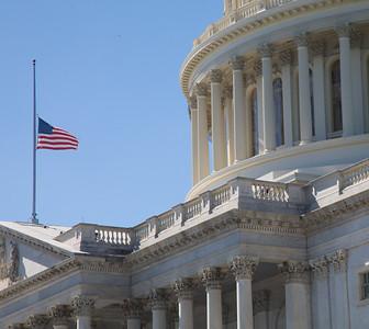 U.S. Captiol, Flag