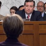 Sally Yates, Ted Cruz