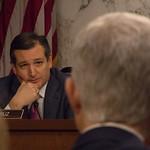 Senator Ted Cruz, Judge Neil M. Gorsuch