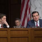 Senator Ted Cruz, Judge Neil M. Gorsuch, Senator Ben Sasse