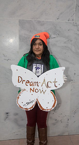 DACA, Dream Act, protest