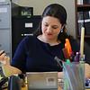 Carly Antonellis, communications director for State Sen. Jennifer Flanagan works at her desk at the Senator's district office in Leominster on Tuesday afternoon. SENTINEL & ENTERPRISE/JOHN LOVE