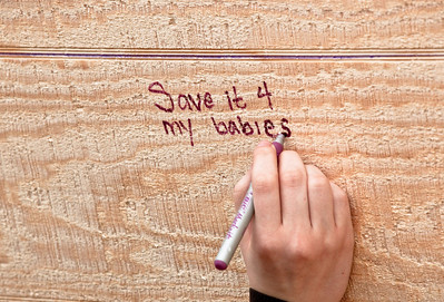 passer-by Cecilia Bardy-Gagner of Minneapolis adds her inscription to the Ark