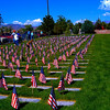 Memorial Day - Fernley Milatary Cemetry 2009.  My neighbors, Ed and John are now here with the other WWII vets.