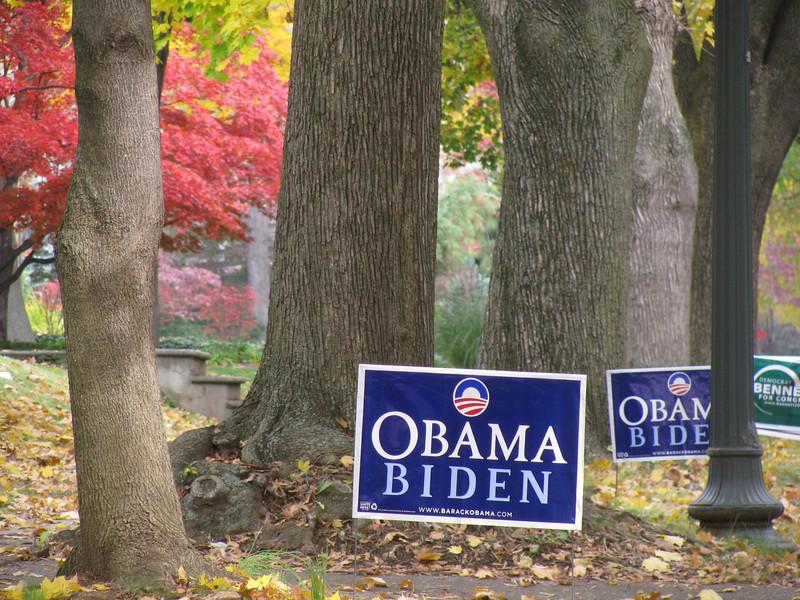 Election 2008 - 06