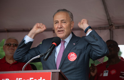 Chuck Schumer, AFGE Rally in D.C.