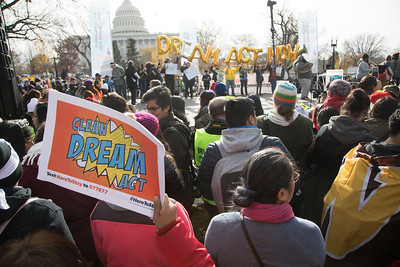 DACA Protest at Capitol