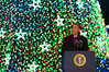 National Tree Lighting with President Obama (2012) : Barack Obama and the First Family flicked the switch to light up the National Christmas Tree before an estimated crowd of 17,000 on the Ellipse, just south of the White House in Washington D.C. on December 6, 2012