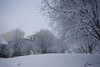 It looks pretty frosty, minus 7.  I wonder if anyone will make it out.