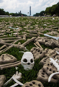 June 9, 2013 Washington DC On June 8-11, thousands of volunteers dressed in white gathered on the National Mall in Washington D.C. to create a powerful visible protest against genocide and to raise awareness of mass atrocities in Sudan, Burma, Somalia, Syria and the Democratic Republic of the Congo. One million bones, crafted by artists, students, and activists from around the world were laid out as a striking symbol of our common humanity.  The bones were hand crafted by 100,000 people from every state and 30 countries from clay, plaster, paper and other materials  One million bones, crafted by activists from around the world, were laid out on the National Mall as a striking symbol against genocide, on June 9, 2013.