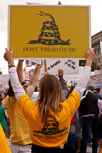 "9-12-09 March on Washington inspired by the Tea Party. The Gadsden flag is a historical American flag with a yellow field depicting a snake coiled and ready to strike, above the words ""Don't Tread on Me"". Since 2009, it has been adopted as a symbol of the American Tea Party movement."