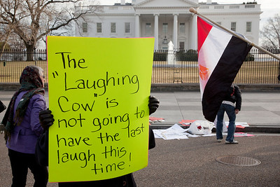 "Several hundred demonstrators demanding that Egyptian President Hosni Mubarak vacate his office gathered outside the White House for a planned march to Capitol Hill in Washington DC on Friday, February 4, 2011. Mubarak has been head of government in Egypt for 30 years. In recent days, thousands of Egyptians have poured into the streets of several cities to call for a change in government. Sign refers to the ""Laughing Cow"". Egyptian President Hosni Mubarak is often jokingly referred to as the Laughing Cow because of his supposed resemblance to the cheese brand's logo. (Photo by Jeff Malet)"