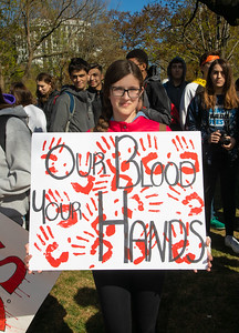 National School Walkout to End Gun Violence