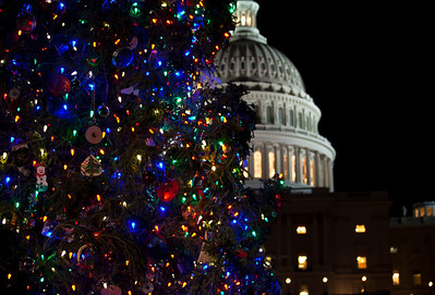 In one of her last official roles as Speaker of the House, Nancy Pelosi (D-CA) lights the US Capitol's Christmas tree during a 5 PM ceremony on the West Front lawn on December 7, 2010 in Washington DC.  The 67-foot Engelmann spruce came from Wyoming's Bridger-Teton National Forest and was decorated with thousands of ornaments made by Wyoming residents. (Photo by Jeff Malet)