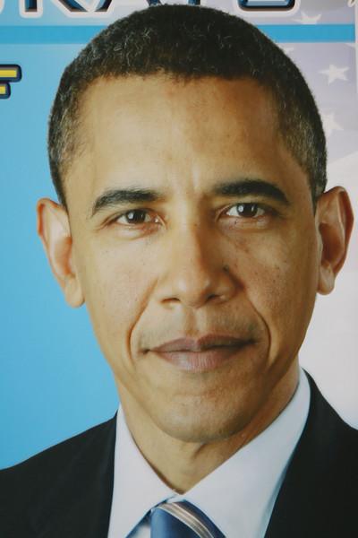 Vote to Re-elect President Barack Obama!!