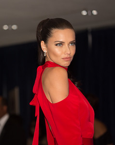 Adriana Lima, White House Correspondents Dinner