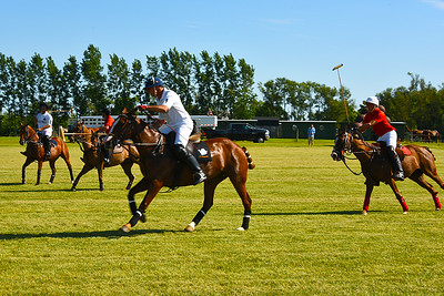 polo hamptons