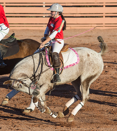 Polo in Arizona