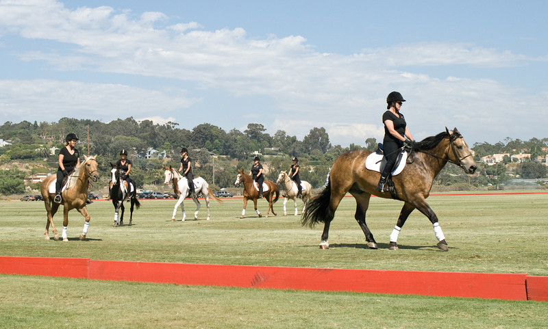 Rythym Riders and Drille Divas Quadrille Dressage