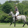 Polo : 2 galleries with 349 photos