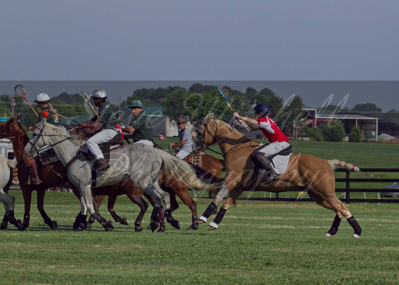Polocross May2011_037
