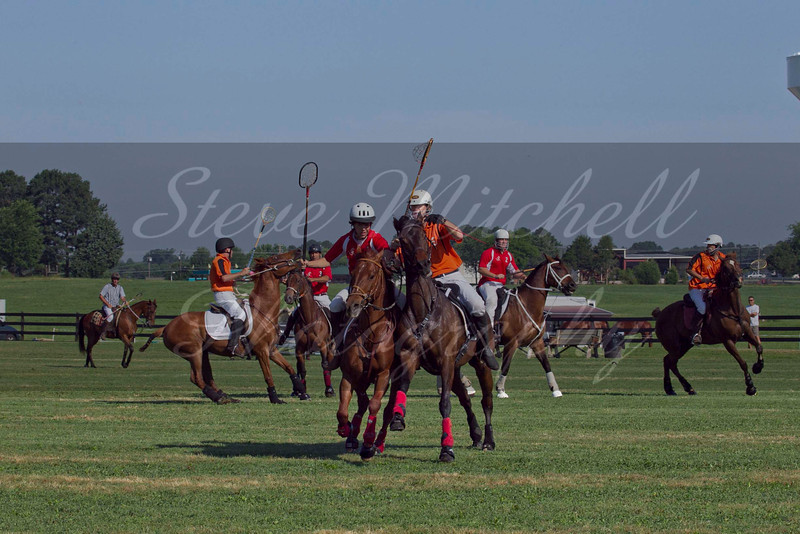 Polocross May2011_014
