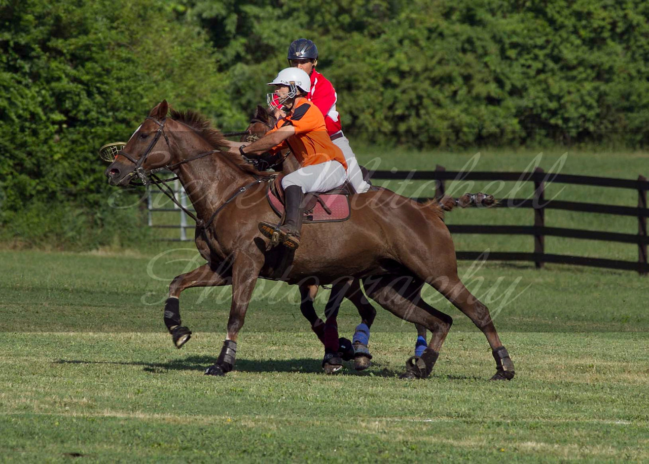 Polocross May2011_007