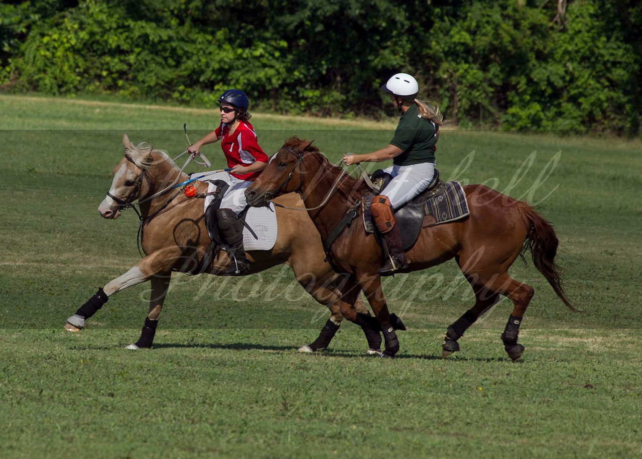 Polocross May2011_047