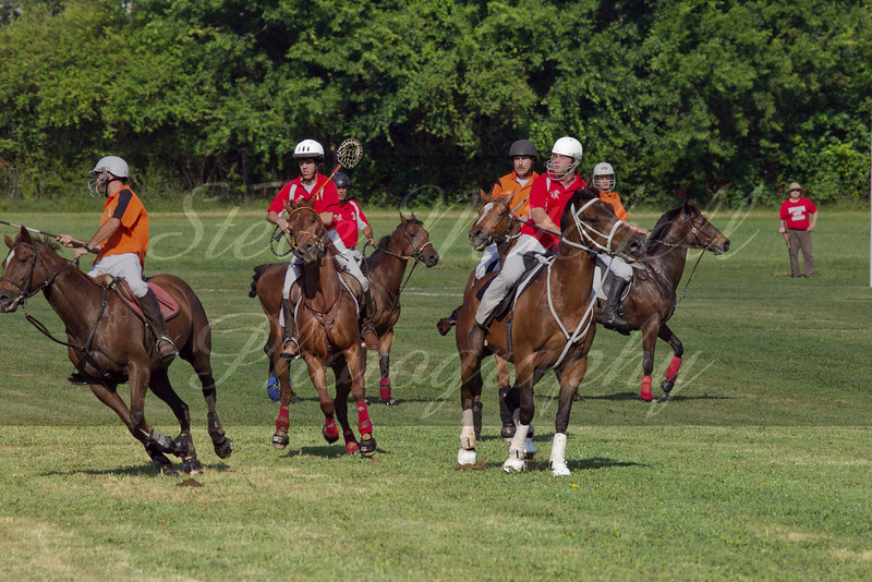 Polocross May2011_019