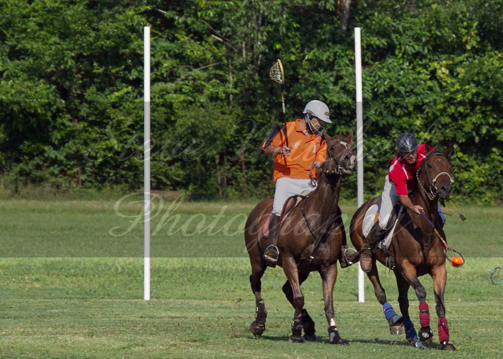 Polocross May2011_020