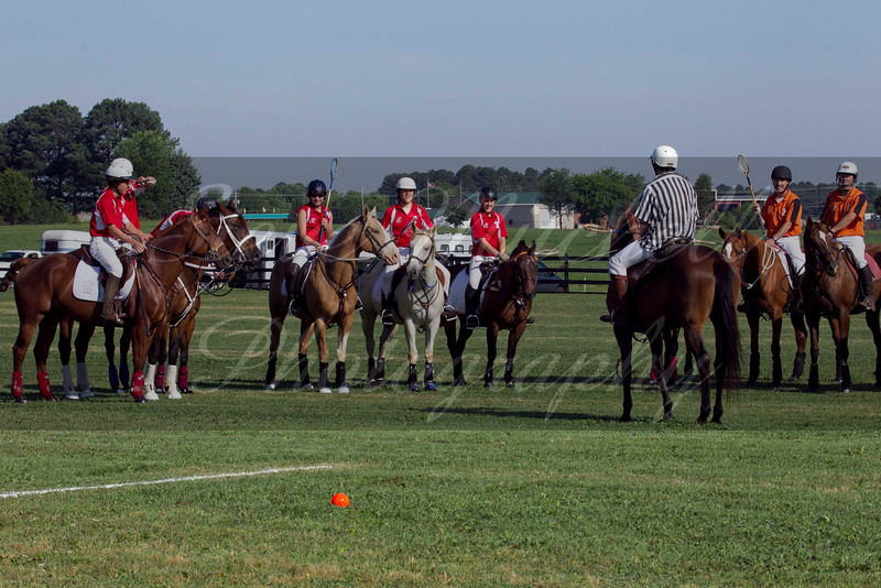 Polocross May2011_005