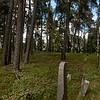 Muslim cemetery in Bohoniki, Polska / Cmentarz muzulmanski, Bohoniki, Polska